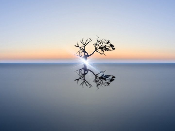 Binding the Energy of Stillness and Regaining the Self